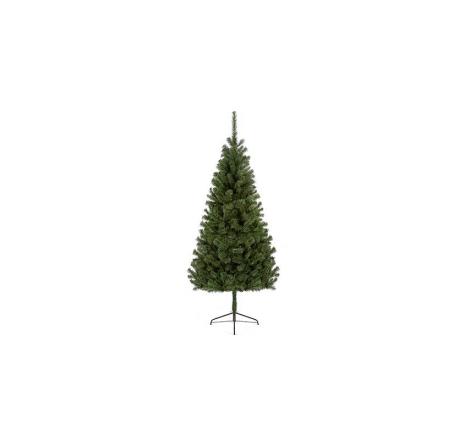 2.4M DOUGLAS FIR TREE